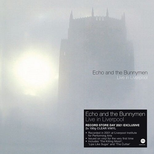 Echo & the bunnymen live in liverpool.jpeg